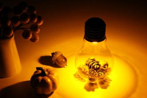 松ぼっくりと電球