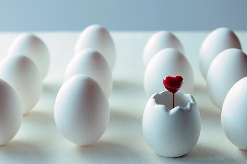 並べられた卵