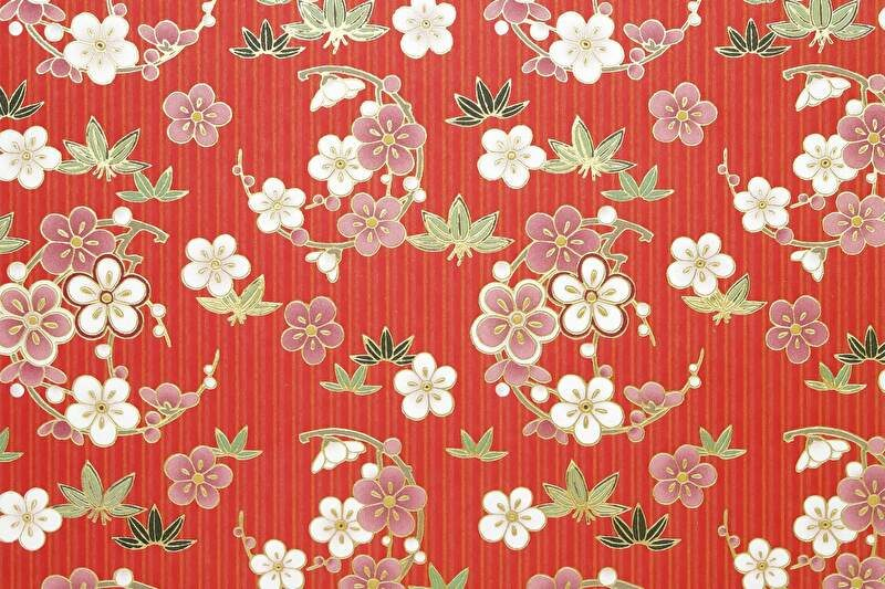 和柄 梅の花