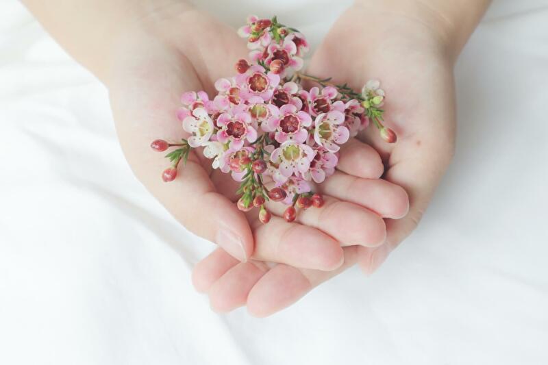 手の中の花