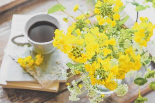 菜の花のあるテーブル